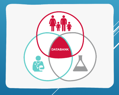 BRIAN databank